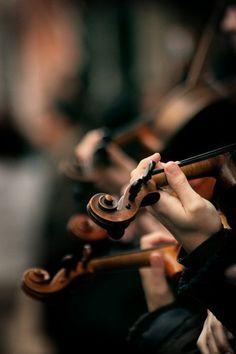 violins in orchestra