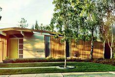 Los Altos Eichler's | www.siliconvalleyeichlers.com Portola Valley, Mid Century Exterior, Mid-century Modern, Modern Homes, Ranch Life, Floor To Ceiling Windows, Modern Exterior, Mid Century Style, Art And Architecture
