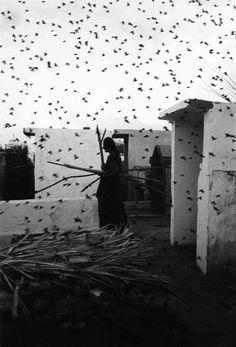 Graciela Iturbide est née à Mexico-city, l'ainée de treize enfants. Elle étudia au Centro de Estudios Cinematograficos à l'Universidad Nacional Autonama de Mexico, où elle rencontra son professeur et mentor, le cinématographe et photographe moderne mexicain, Manuel Alvarez Bravo, qui enseignait à l'Université. Elle était son assistante au début des années 1970, et l'accompagnait pendant ses nombreux voyages photographiques à travers le Mexique.