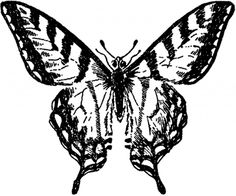 Vintage Butterfly Image - Nice! - The Graphics Fairy