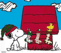 Snoopy and Woodstock Decorating Snoopy's Doghouse With Christmas Stockings Peanuts Christmas, Christmas Cartoons, Charlie Brown Christmas, Charlie Brown And Snoopy, Christmas Art, Xmas, Christmas Stockings, Christmas Messages, Christmas Drawing