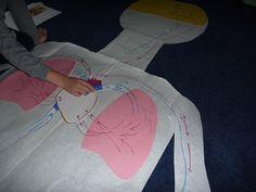 Montessori Human Body Unit