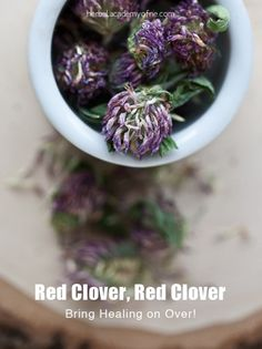 "Red Clover Flower Tea  ""Roses are red, violets are blue. If health is important, drink red clover brew!""  Ingredients 1 to 3 teaspoons red clover blossoms Hot water post boil Directions      Add the dry red clover flowers into the hot water in a heat safe vessel.     Steep for 15 minutes.     Drink 3 times a day."