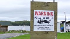 """A new report shows the Ontario government knew nearly 30 years ago that a mill site upstream from Grassy Narrows First Nation was contaminated with mercury. """"There's a continued liability on the province,"""" Grassy Narrows chief Simon Fobister said. Mercury Poisoning, Windsor London, Prince Edward Island, You Are Awesome, Supreme Court, First Nations, Health Problems, Ecology, Ontario"""
