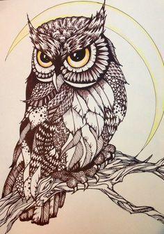 Risultati immagini per owl drawing