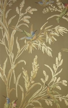 Augustine Wallpaper A printed wallpaper on a golden brown background featuring colourful birds amongst  wildflowers and plants.