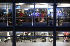 FitInn: Die fetten Jahre sind vorbei, lautet der Untertitel des Fitnessstudios an der Wiener Straße 2g. Die Kunden können während des Schwitzens das Geschehen auf der Straße beobachten - und umgekehrt. Mehr zur Wiener Straße hier: http://www.nachrichten.at/oberoesterreich/linz/Die-Wiener-Strasse-Hier-ist-Linz-besonders-multikulturell;art66,1324936 (Bild: Weihbold)