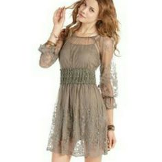 Gorgeous embroidered lace light brown dress NWT amazing dress American Rag Dresses
