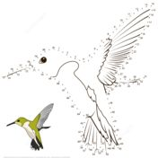 Hummingbird dot to dot from Birds category. Select from 32014 printable crafts of cartoons, nature, animals, Bible and many more. Colouring Pages, Coloring Pages For Kids, Coloring Books, Bird Drawings, Animal Drawings, Hummingbird Colors, Dot To Dot Printables, Dots Free, Bird Crafts
