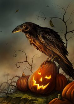 The Raven stands guard over his pumpkin patch.