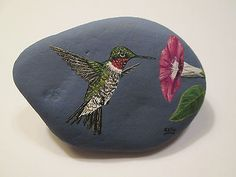 Ruby Throated Hummingbird hand painted on a rock by Ann Kelly