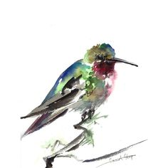 ORIGINAL Watercolor Painting, Broad Tailed Hummingbird, Bird Painting,... ($56) ❤ liked on Polyvore featuring home, home decor, wall art, watercolour painting, watercolor painting, water color painting, hummingbird wall art and watercolor wall art