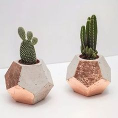 Suéter Azul: Decor - Rose Gold - Copper & Concrete Geometric Dodecahedron by StupidEggInteriors: - Deco Rose, Deco Floral, Concrete Planters, Cactus Planters, Copper Planters, Cactus Y Suculentas, Home And Deco, Potted Plants, Plant Pots