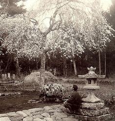 Meiji-era Sakura Watching | Flickr - Photo Sharing!