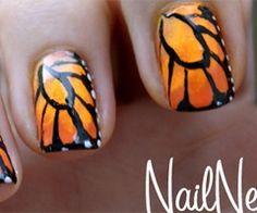 Beautiful mariposa!