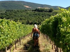 Travel 2 Umbria | Blog – a blog about travelling and living in Umbria Travelling, Vineyard, Mountains, Nature, Blog, Outdoor, Outdoors, Naturaleza, Blogging