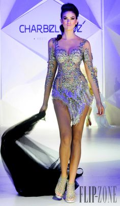 Charbel Zoe Spring-summer 2014 - Couture - http://www.flip-zone.net/fashion/couture-1/independant-designers/charbel-zoe-4261