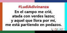 Adivina adivinanza... Sabrías decirnos de qué hablamos en la #LudiAdivinanza de hoy? #Juego @Ludiland