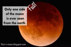 Moon Facts - Unbelievable Facts about the Moon - Did you know that only one side of the moon is ever seen from earth. Fact-o-Rama Moon Facts, Craters On The Moon, Walk The Moon, Unbelievable Facts, Anything Is Possible, One Sided, One Pic, Did You Know, Knowing You
