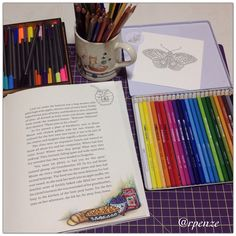 """397 Likes, 11 Comments - Rosana Penze (@rpenze) on Instagram: """"Mais um cantinho doce do Livro Ivy and the Ink Butterfly - @johannabasford - mais os lápis ergosoft…"""""""