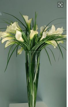 21 Ideas For Flowers Arrangements For Table Tall Vases Calla Lilies Calla Lillies Centerpieces, Succulent Centerpieces, Floral Centerpieces, Flower Vases, Wedding Centerpieces, Calla Lilies, Grass Centerpiece, Lilies Flowers, Green Flowers