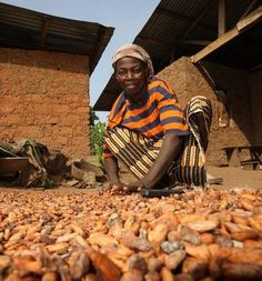 TAKE ACTION NOW! Tell the top three chocolate companies That the Women Who Grow and Pick Cocoa Deserve Better.