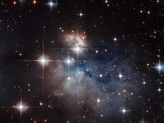 This NASA/ESA Hubble Space Telescope image presents the Arches Cluster, the densest known star cluster in the Milky Way. Space Images, Space Photos, Photos Du, Cosmos, Hubble Pictures, Hubble Space Telescope, Telescope Images, Nasa Space, Hubble Images