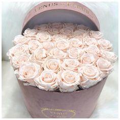 boxed roses, flowers, floral arrangement, venus et fleur Luxury Flowers, My Flower, Pretty Flowers, Fresh Flowers, Colorful Flowers, Couleur Rose Pastel, Rose Arrangements, Flower Aesthetic, Easy Garden