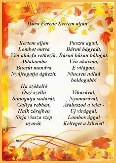 Cantaloupe, Autumn, Fruit, Fall Season, Fall