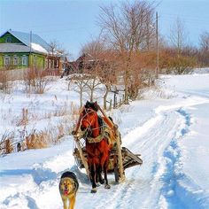Монголия, Тур, Земля, Illustration, Картины, Инстаграм, Санкт Петербург, Россия, Зима