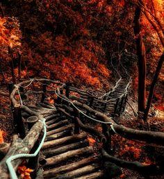 Siga seu caminho mesmo que ele parece destruído, ao menos no final você terá certeza que ele era seu.