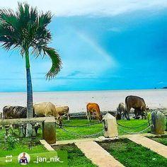 Follow @_jan_nik_: On the shores of #Lake #Nicaragua #Granada #Nicaragua #ILoveGranada #AmoGranada #Travel