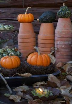 Mini Pumpkins & Terracotta Pots