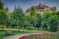 Palatul Ullmann privit din Parcul 1 Decembrie | Oradea in imagini