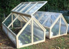 In Rob's Northeast garden, plants such as lettuce, kale, broccoli, were able to survive the sub-zero weather in these cozy cold frames.
