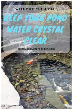 Pond Algae Control - UV Light Installation keep your pond water crystal clear without chemicals usin Outdoor Ponds, Ponds Backyard, Garden Ponds, Outdoor Fountains, Backyard Waterfalls, Planter Garden, Water Fountains, Garden Fountains, Outdoor Areas