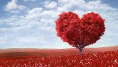 Happy Valentine's from The Boehm Team. We are here to help you find the home you love in the Texas Hill Country.