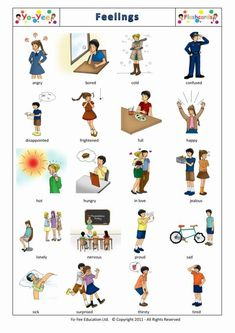 English Step-up Flashcards for Primary Students and Children - Teaching Children English Elementary Language Skills Easy and with fun
