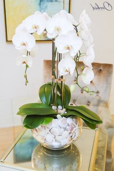 mason jar flower arrangements, white orchids, in a glass round vase, filled with seashellsThe Atlantis – OrchidRepublicLet spring into your home with our beautiful flower arrangements - we have some tips for you, as well as some pretty great pictur