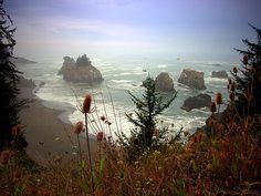 A Beautiful Little Cove on the Pacific Coast by Joyce Dickens #pacific #coast #cove