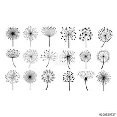 Illustration about Dandelion Fluffy Seeds Flowers Hand Drawn Doodle Style Black And White Drawing Vector Icons Set. Illustration of hand, doodle, fluffy - 70180632 Doodle Drawings, Doodle Art, Flower Doodles, Doodle Flowers, Hand Doodles, Floral Doodle, Drawing Hands, Drawing Drawing, Black And White Drawing