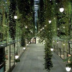 Le mur végétal par Indoorlandscaping