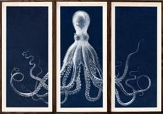 Lord Bodner Triptych in blue | Natural Curiosities -- the exact art hung in Duke's room