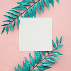 Beautiful blue border leaves on pink background with blank frame Collage Background, Flower Background Wallpaper, Flower Backgrounds, Wallpaper Backgrounds, Iphone Wallpaper, Backgrounds Free, Framed Wallpaper, Pink Wallpaper, Instagram Frame Template
