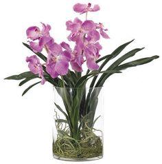FINAL SALE ITEM | Vanda Orchid, Lavender PF017