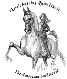 Polly Paintbrush - Outrageous Originals and Custom Designs Nice drawing. Horse Riding Quotes, Horse Quotes, Animal Quotes, Horse Love, Horse Girl, Equestrian Funny, American Saddlebred, Horse Barns, Equine Art