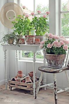 Pink Geranium Cottage