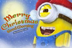 Merry Christmas, Good Morning quotes holidays christmas minion minions good morning merry christmas christmas quotes cute christmas quotes holiday quotes christmas minion christmas quotes for friends best christmas quotes christmas minion quotes good morning christmas quotes