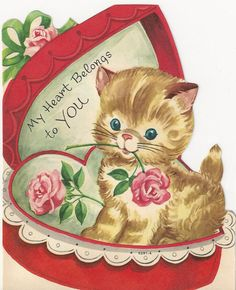 Valentine kitten in candy box