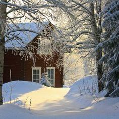A Swedish winter day.... so pretty